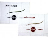 towel-IMG_20180626